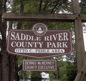Saddle River Nature