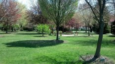 Van Saun Park