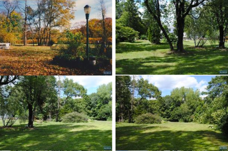 Ridgewood land for sale