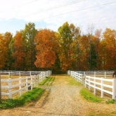 bergen county equestrian club