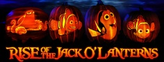rise of jack o'lanterns 2016 new jersey