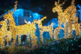 bergen county holiday lights show