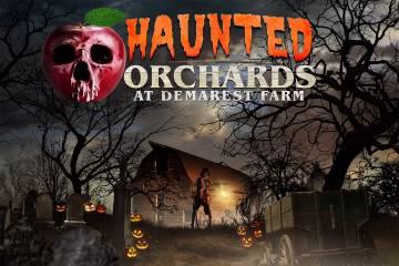 bg-hauntedorchards.jpg